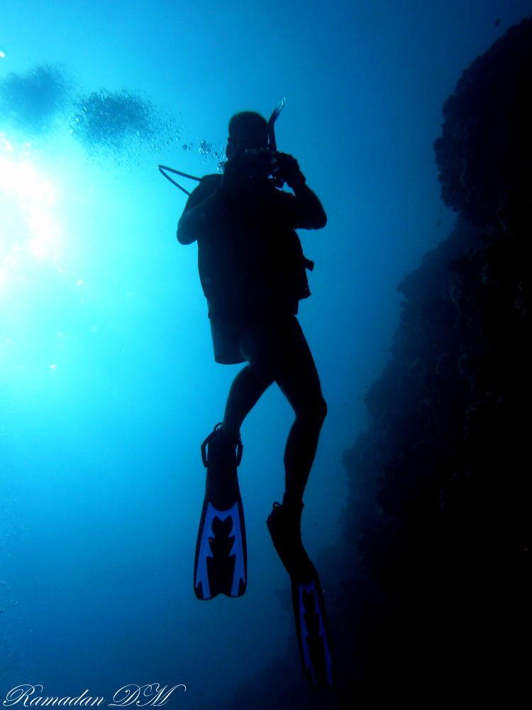 Diver by Ramadan