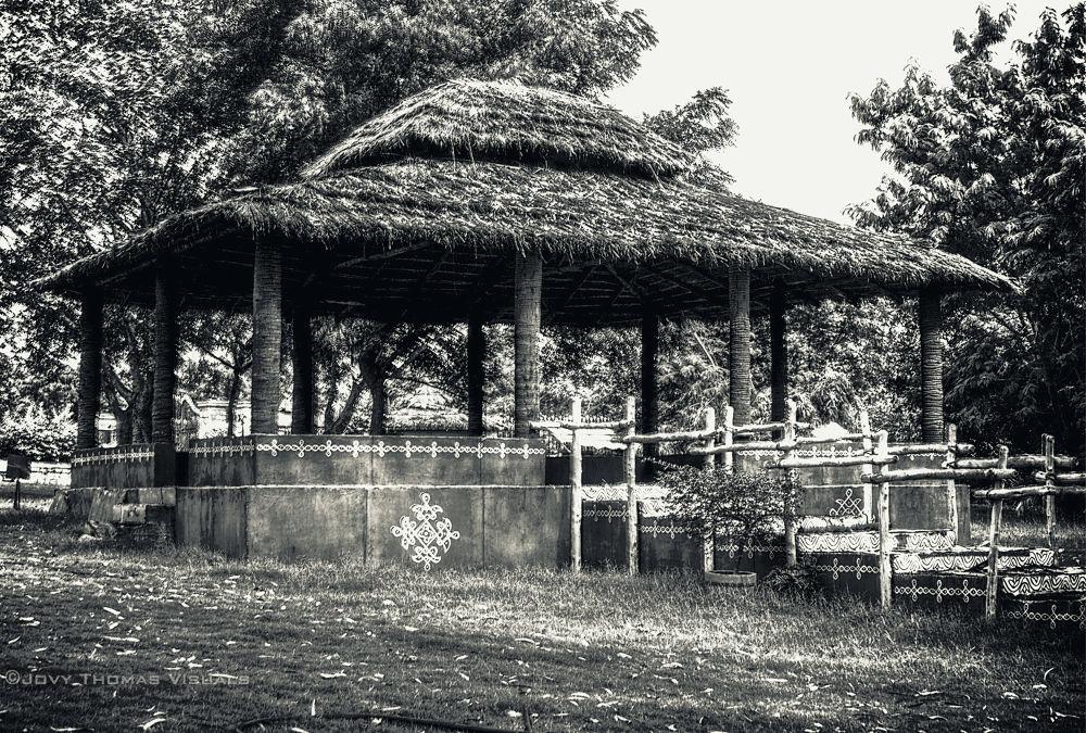 Botanical Garden Hyderabad by JovyThomas