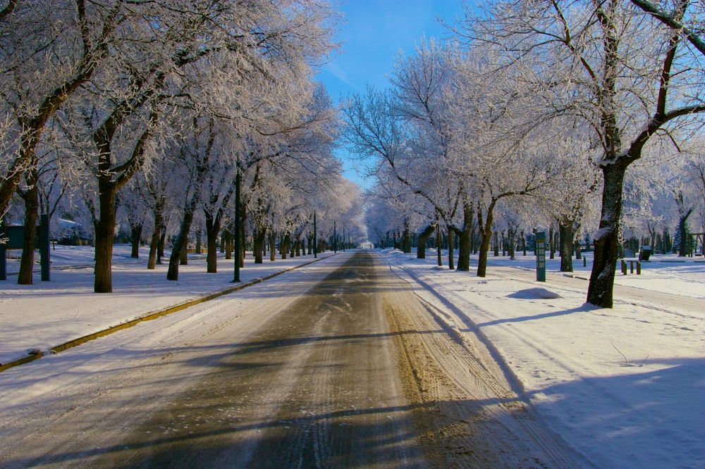 Frost by rndmtn