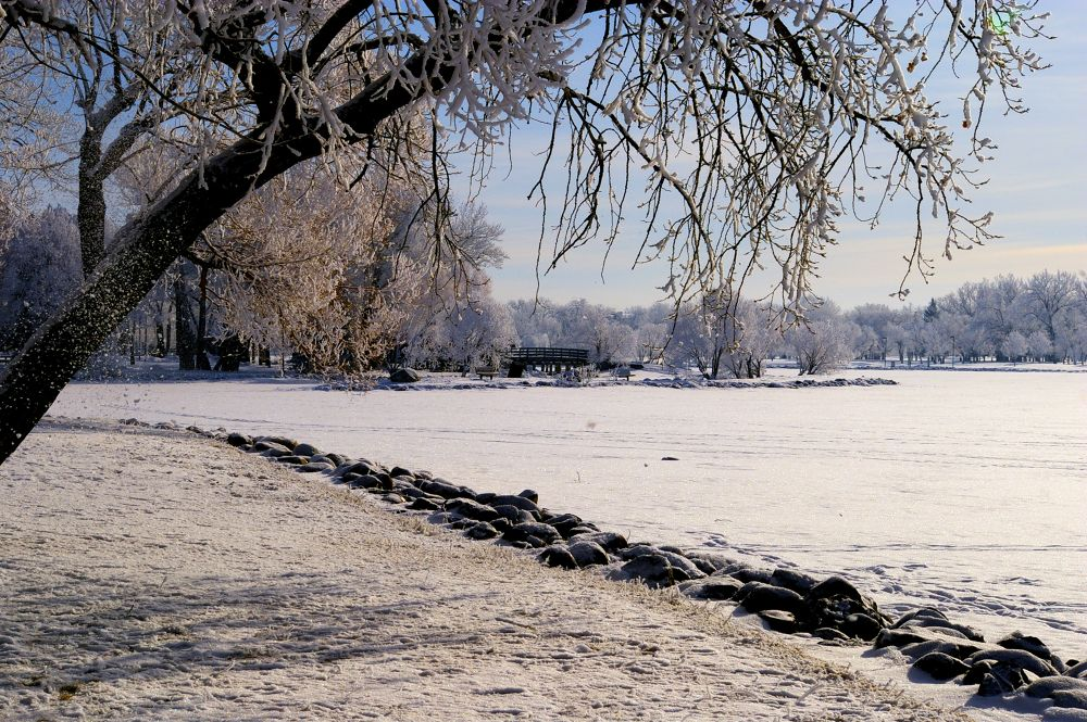 Winter Walk by rndmtn