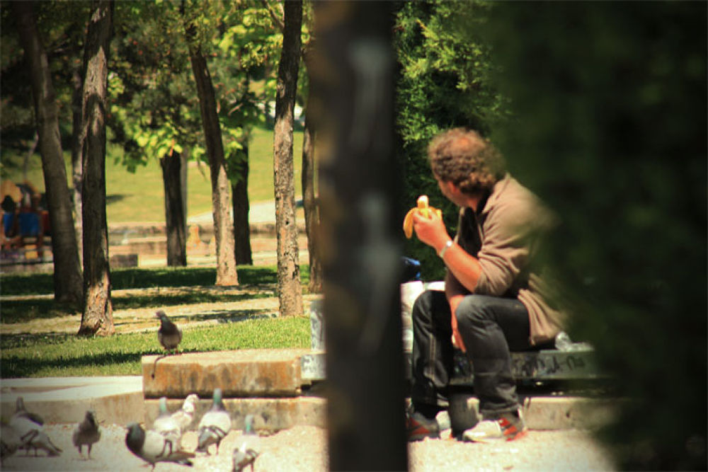 el amo del parque by monica vitali photography
