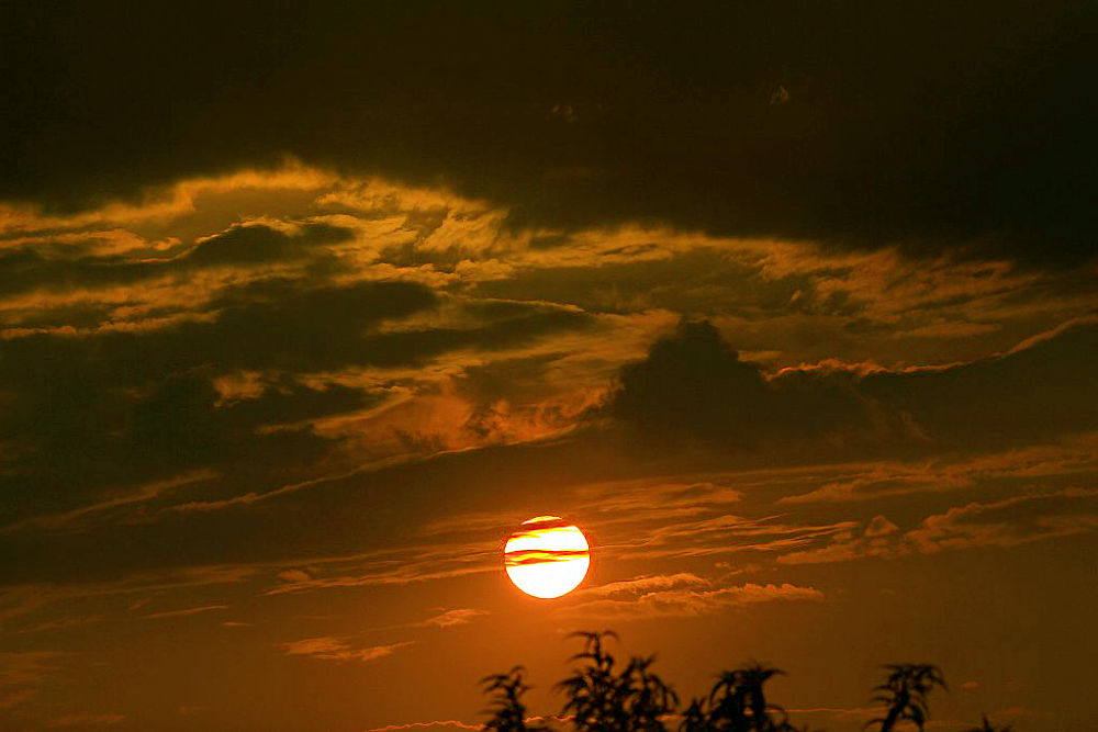 IMG_4736 by haile5895
