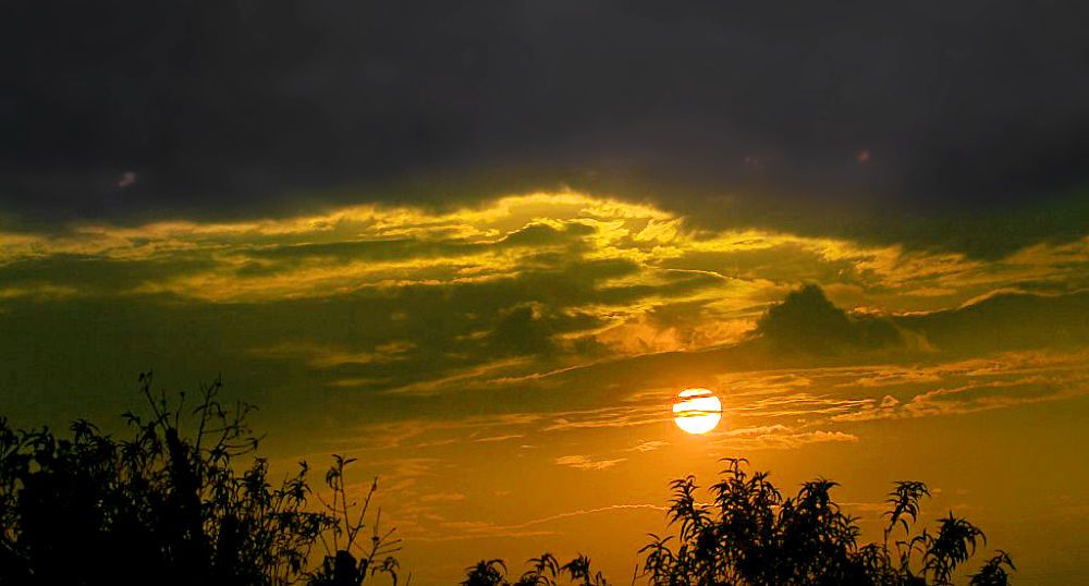 IMG_4735 by haile5895