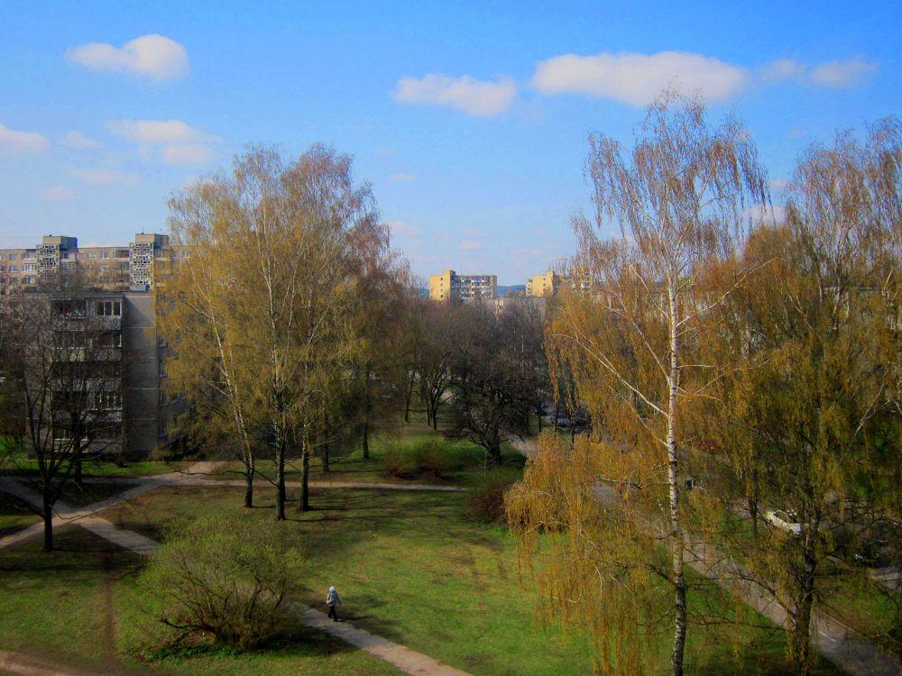 The Image of Vilnius by Simona Bakševičiūtė