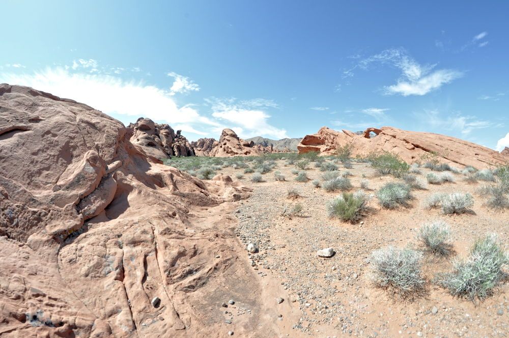Valley Of Fire Nevada  by David Thornell