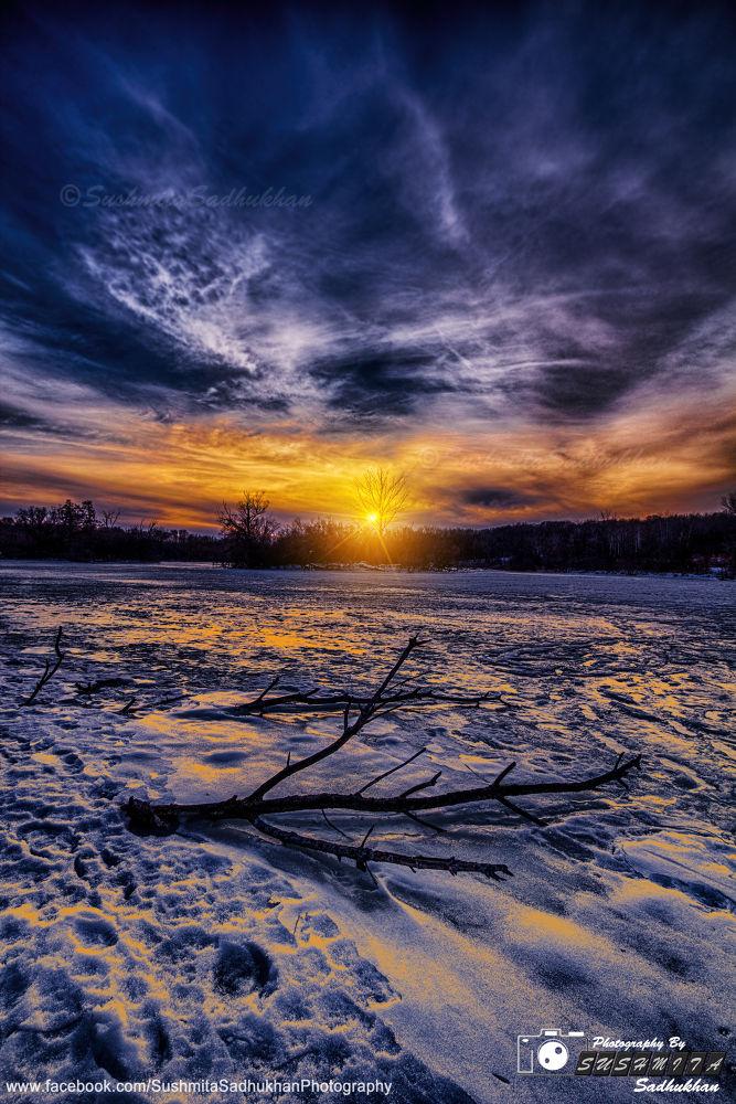 Photo in Landscape #winter #morning #evening #snow #ice #sky #cloud #drama #red #yellow #blue #orange #white #black #water #tree #tree trunc #brunch