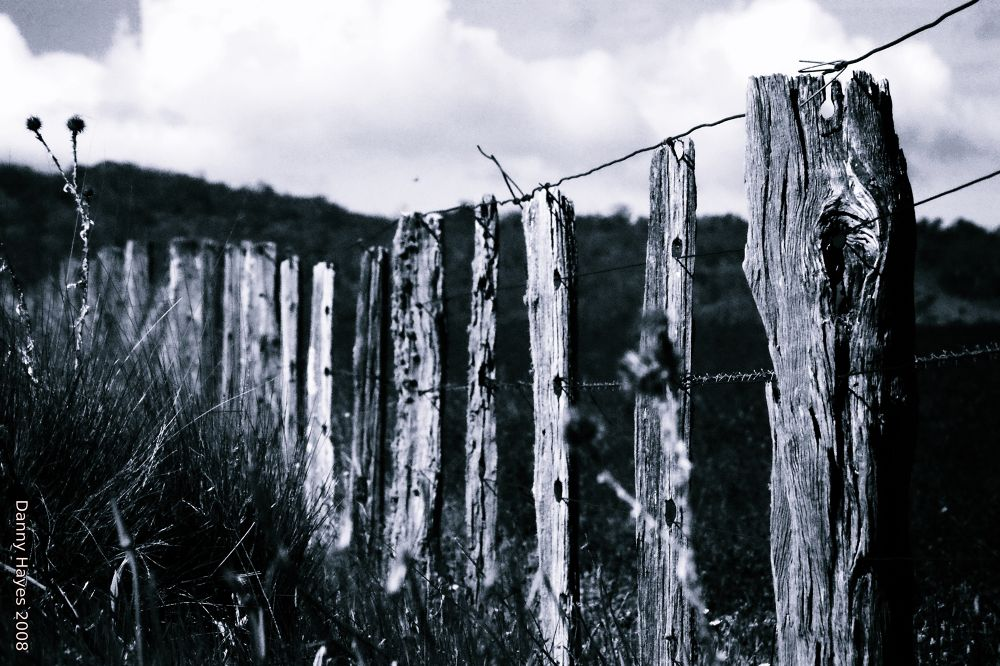Australian Fences near Jindabyne NSW Australia  37-12-2008 by SMORTAUS