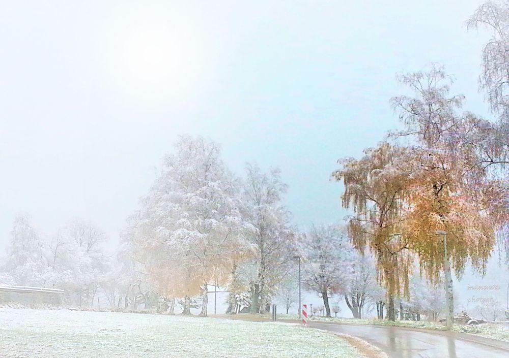 Winter ..... by manuwa
