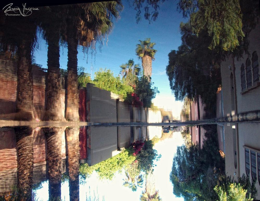 Reflection by Yassine Azaou