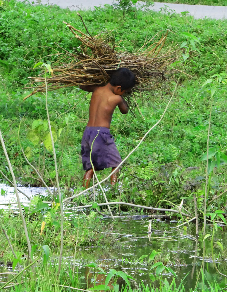 Life of a boy by Asif Bora