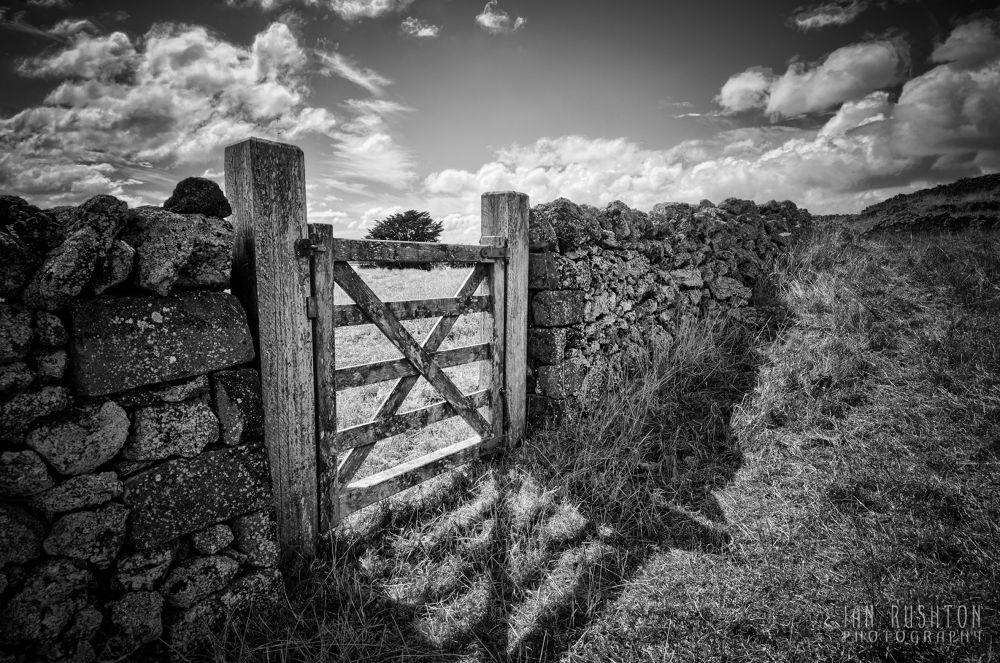Gate by Ian Rushton