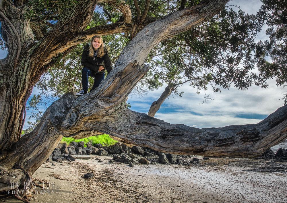 Photo in Random #tree #girl #beach #auckland #sand