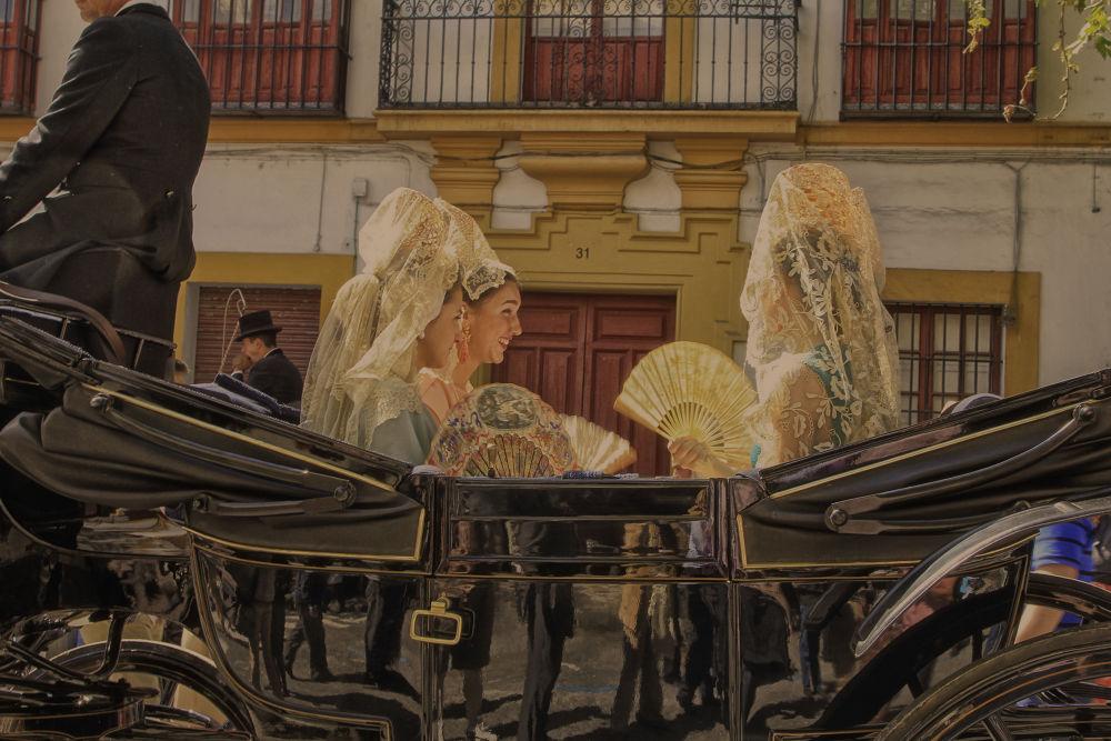 Exhibición de carruajes by lolacamachotroyano