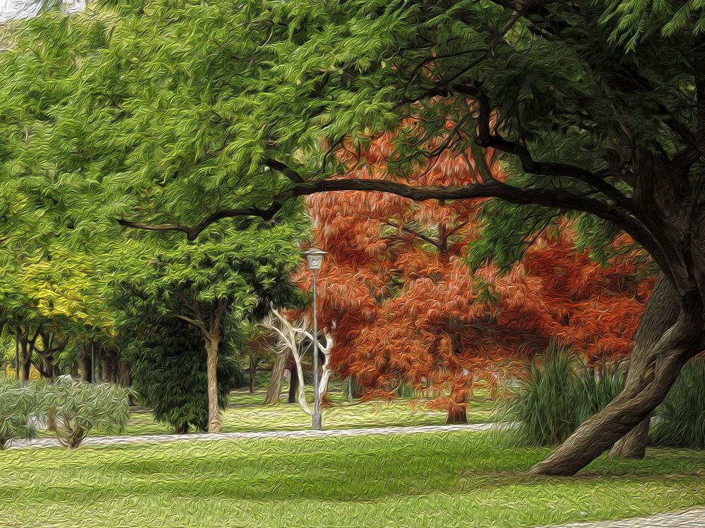 El parque by lolacamachotroyano
