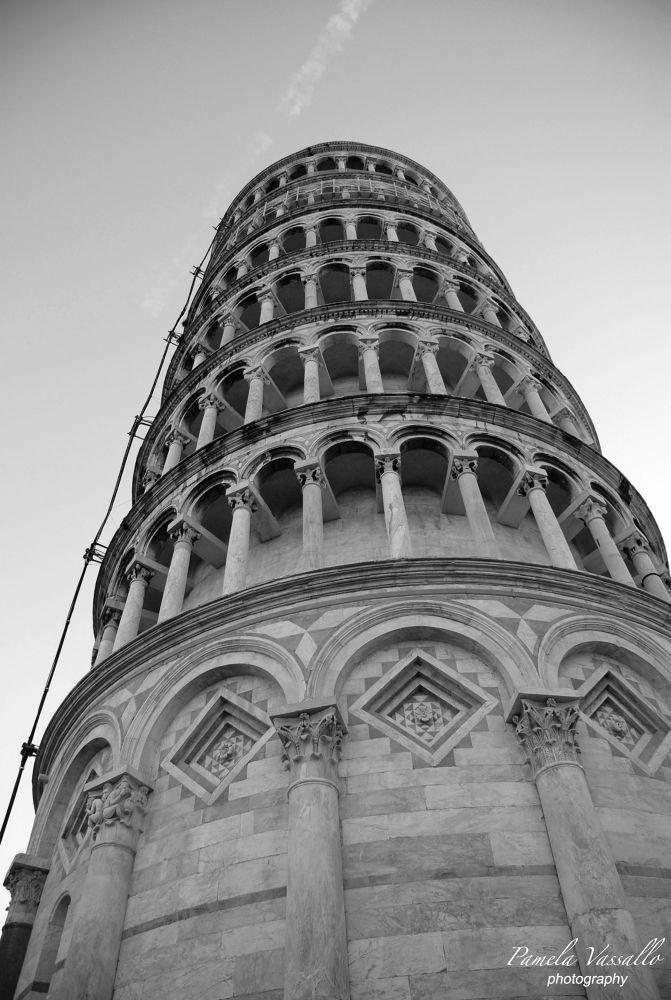 Tower of Pisa (Leaning Tower of Pisa) by Pamela Vassallo
