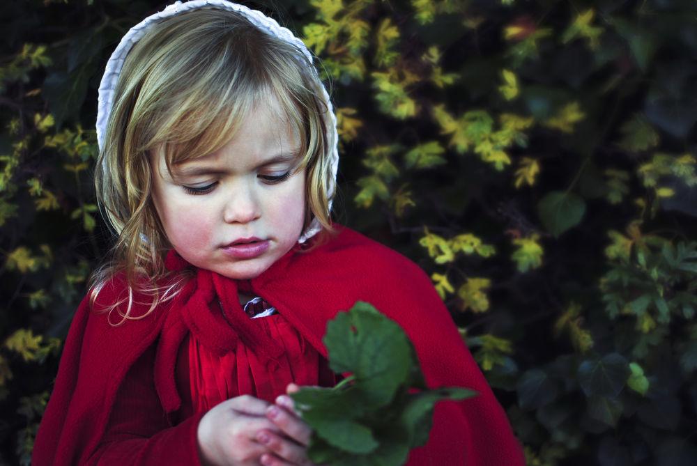 Little Red Riding Hood by Agnieszka Cybulska