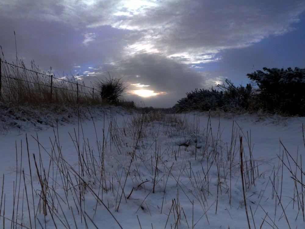 Winter path  by Bruce Summerton