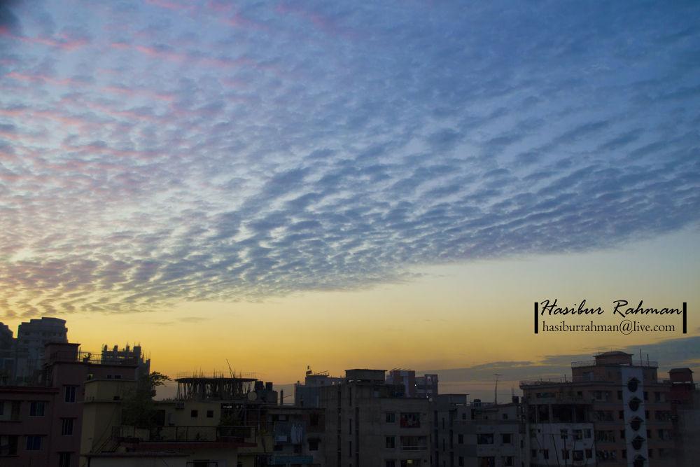 _DSC1197 by Hasibur Rahman