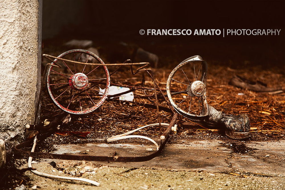 Memories by famato