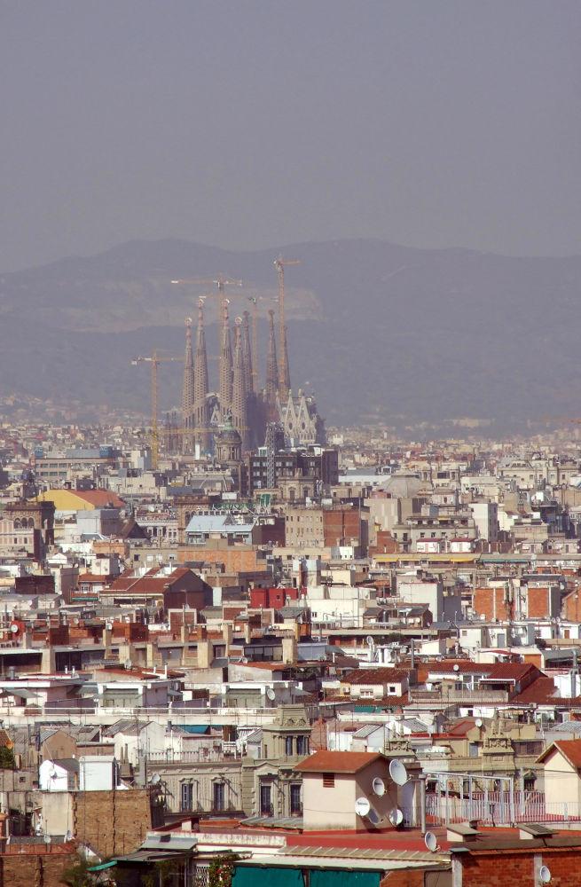 Sagrada Familia - Barcelona by PedroCapao