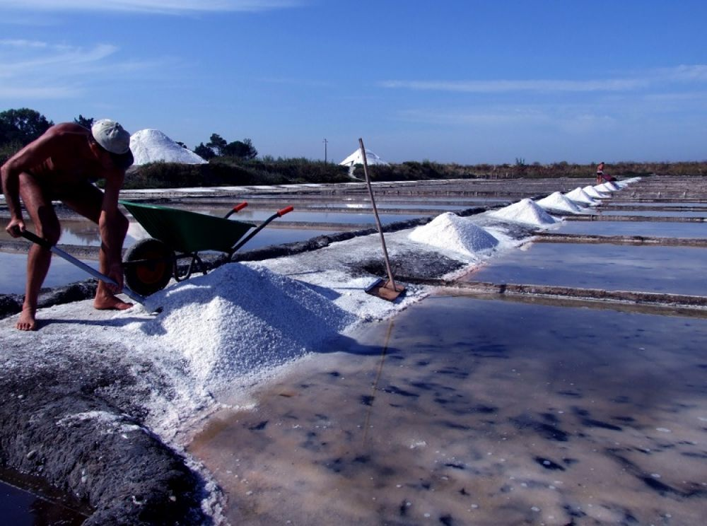Salty work... by PedroCapao
