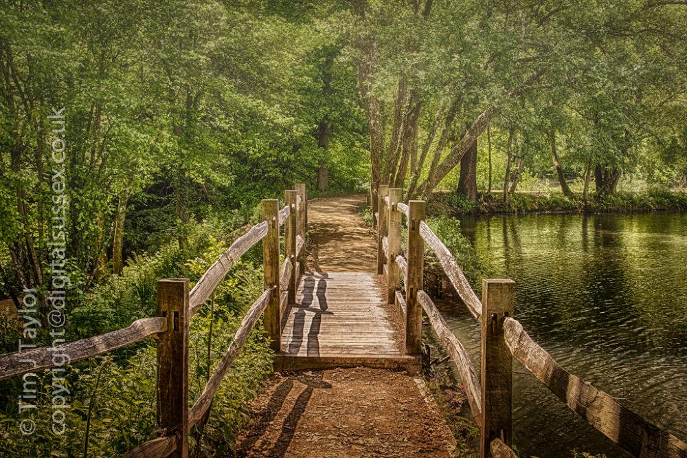 Wakehurst - Westwood Lake Footbridge.jpg by DigitalSussex