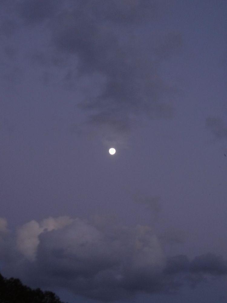 P'tite lune by BRISYL