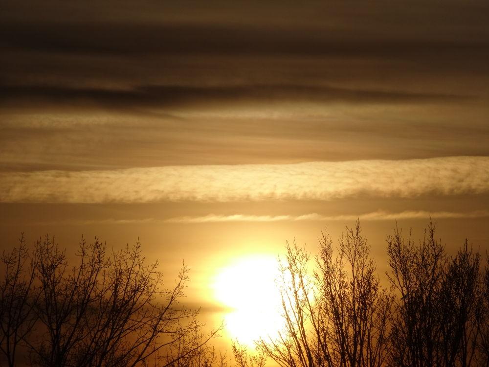 Soleil d'hiver by BRISYL