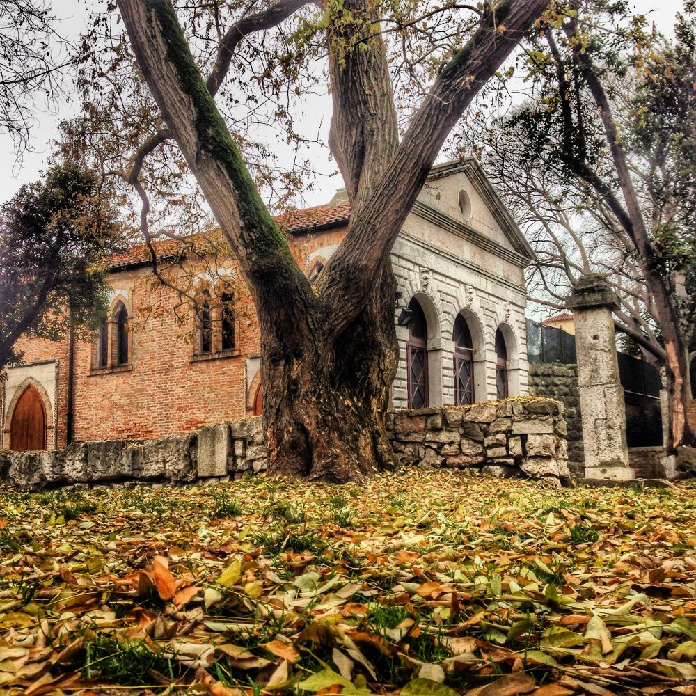 Parco villa Groggia by marintmarino