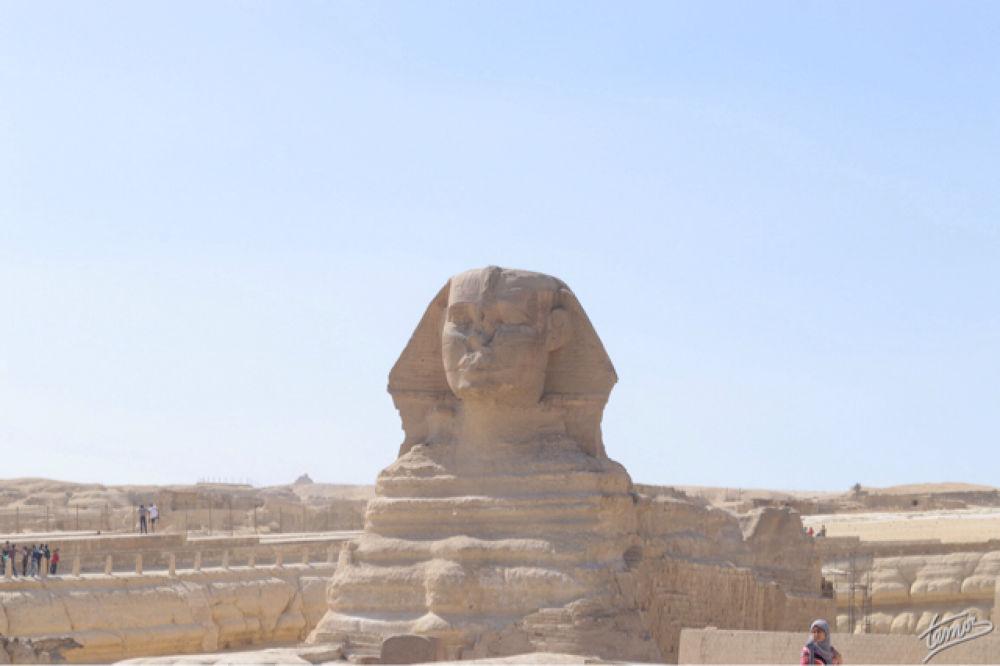 The Sphinx by temos.photos