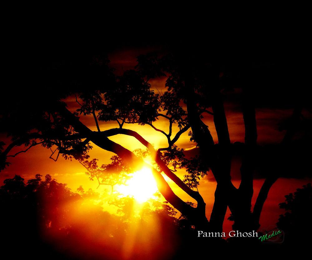 panna by pannaghosh