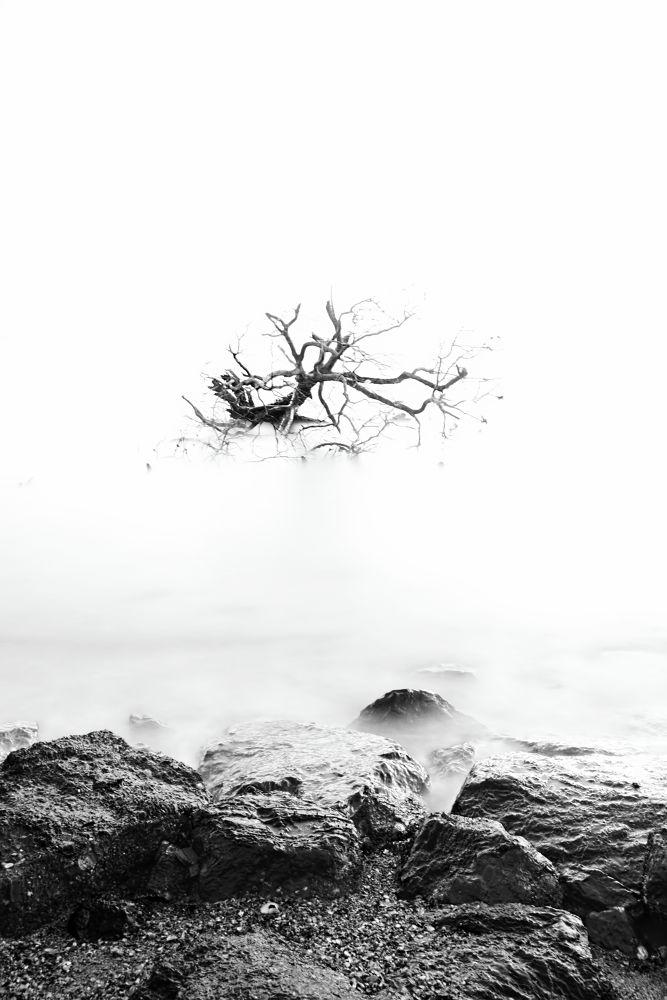 Awaken by anuarchehussin