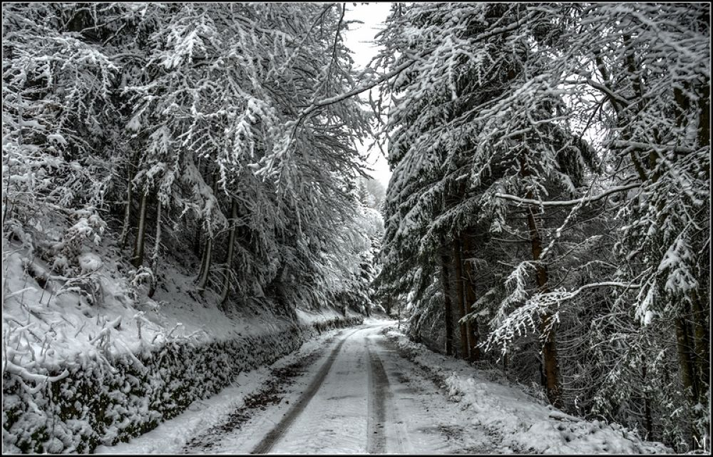 Photo in Nature #snow #winter #road