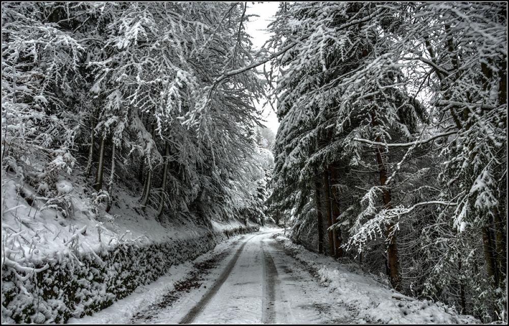 snow road by borutmocnik1