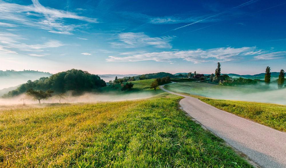 Foggy road by Peter Zajfrid