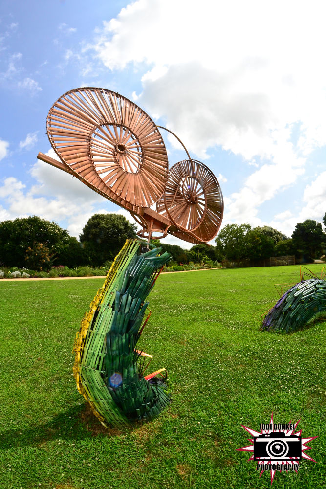 Photo in Random #dragon #summer #raleigh #north carolina #park #jodi donkel