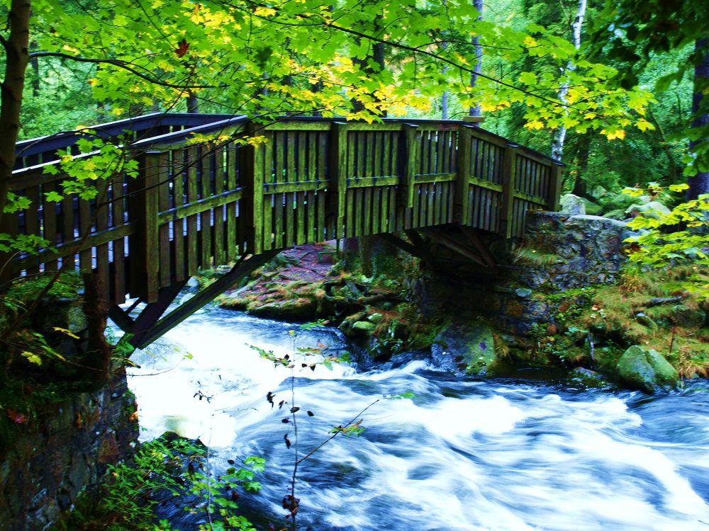 Brücke Verlobungsinsel by Susanne Schulze