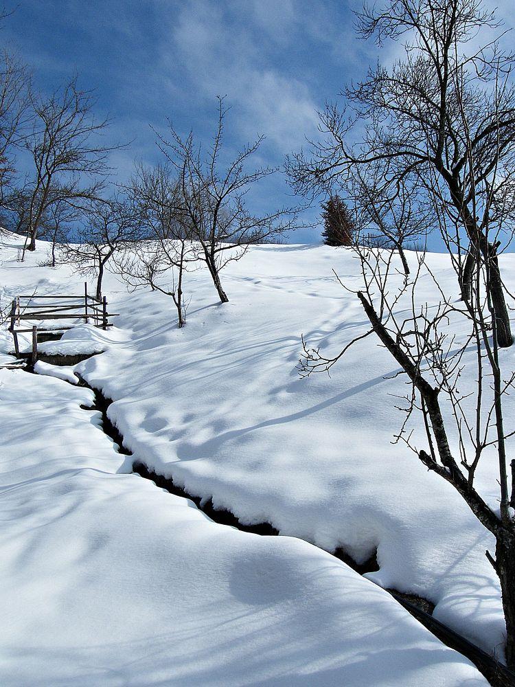 winter by MCAdel