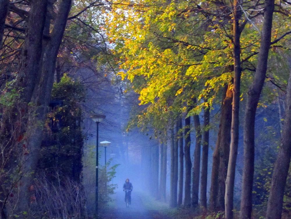 xxx fietser in de mist.JPG by hugodejong35