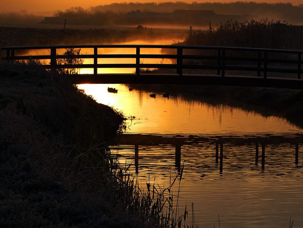 A golden morning by hugodejong35