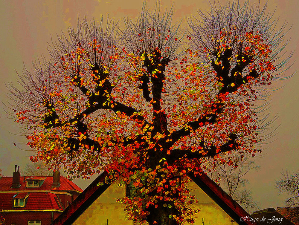 Autumn in Odijk by hugodejong35