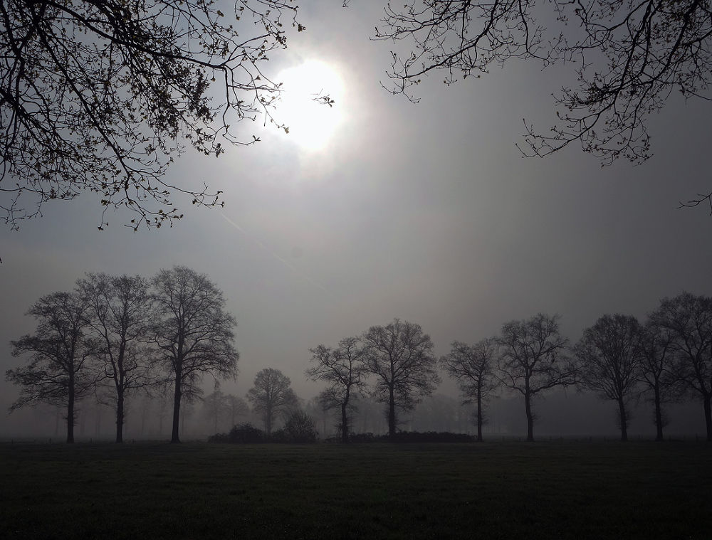 a foggy morning in Winterswijk by hugodejong35