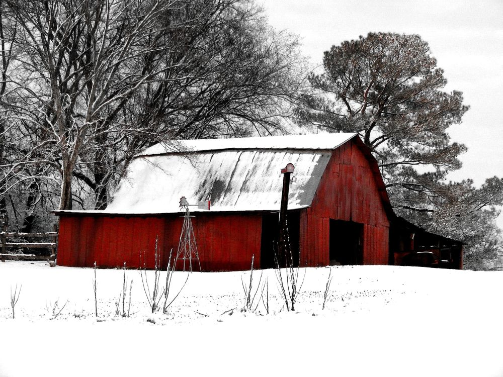 Red Barn in the White by PRAZZI