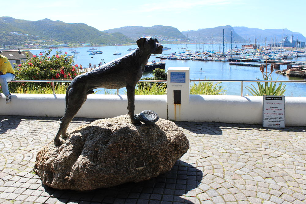 Simon's Town by tanyakruger359