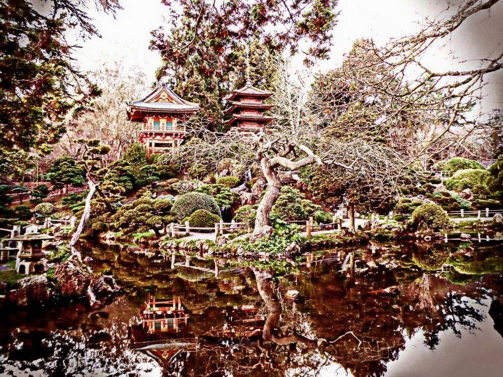 Japanese Tea Garden by FlannelPhotos