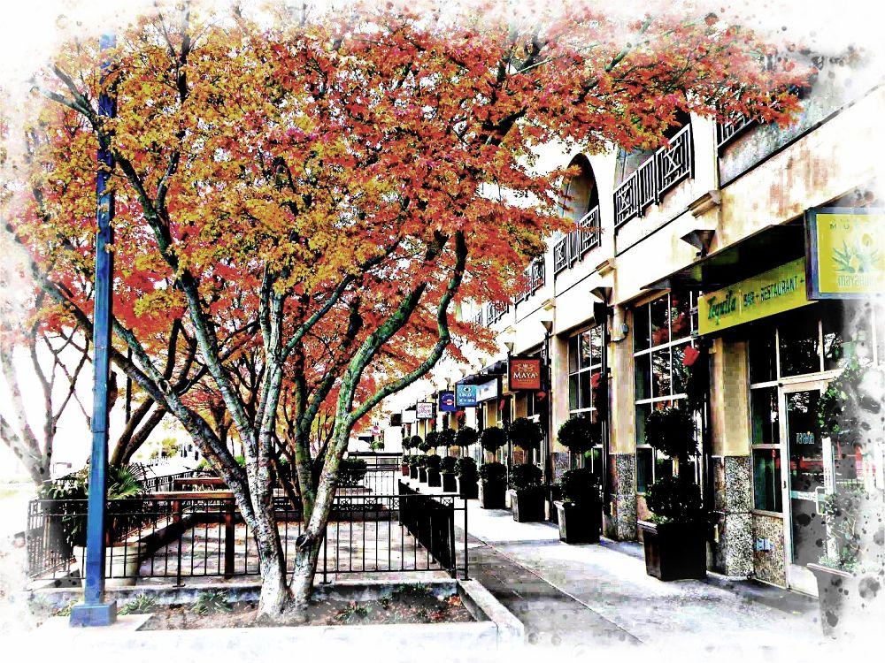 pedestrian mall 4 by FlannelPhotos