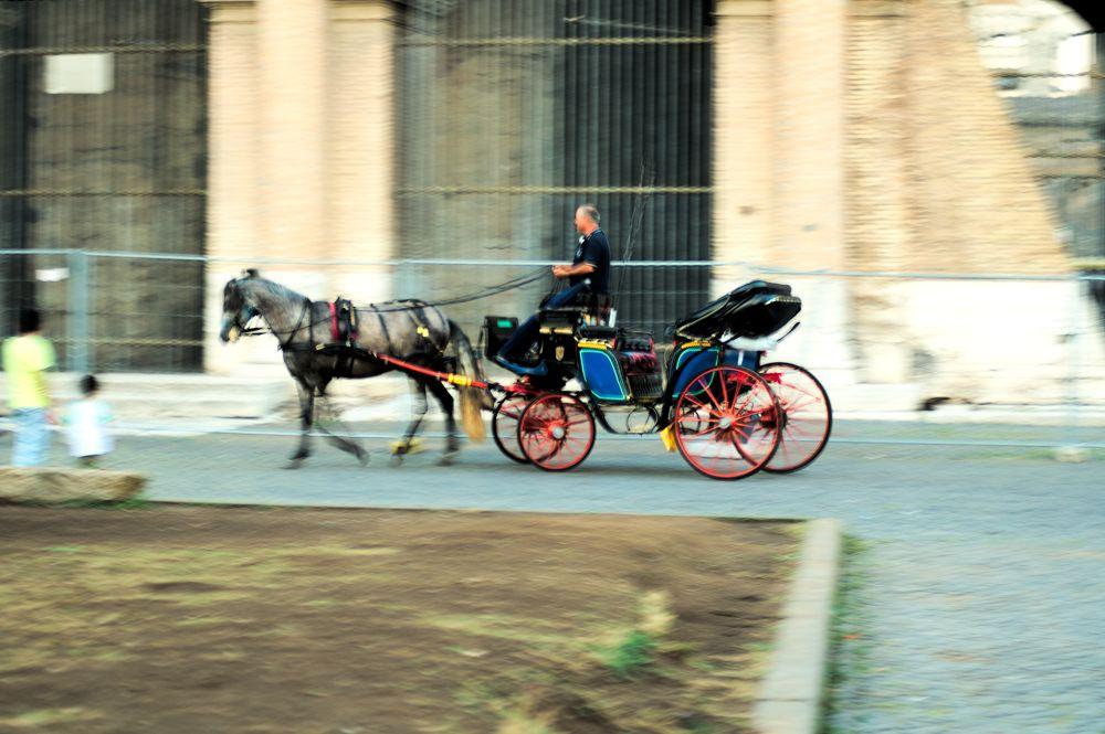 wheelchair by lozio