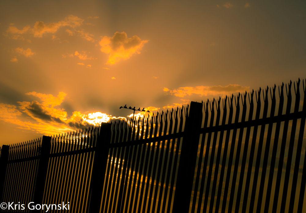 Prisoner by Kris Gorynski