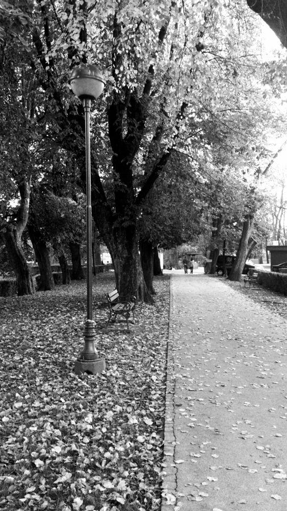 Park by oliversvob