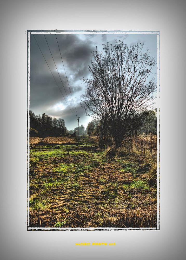Stubble before autumn storm by oliversvob